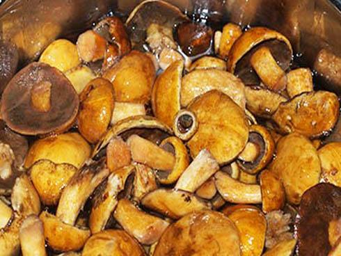 Как заморозить грибы отварные