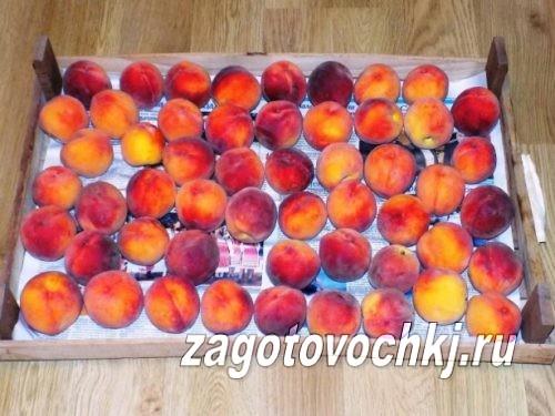 персики редхейвен