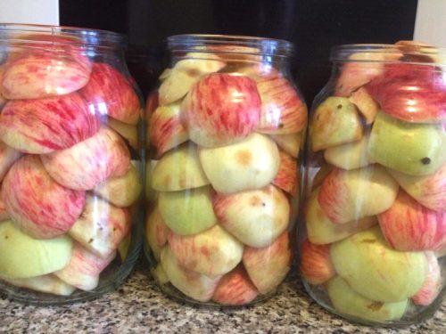 уложить яблоки в банки