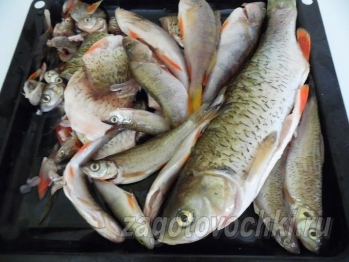 Как приготовить рыбные консервы в мультиварке
