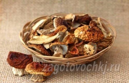 засушить грибы