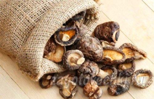 сушим грибы в домашних условиях