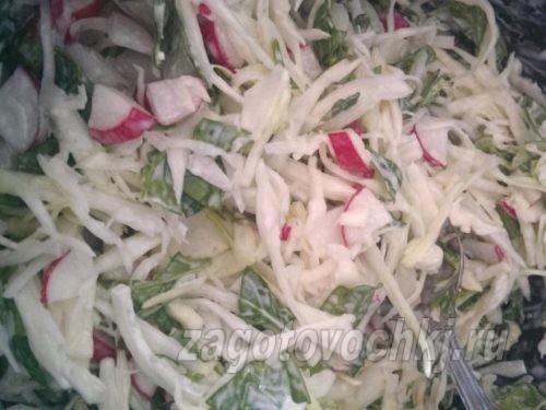 Салат со шпинатом, капустой и редисом