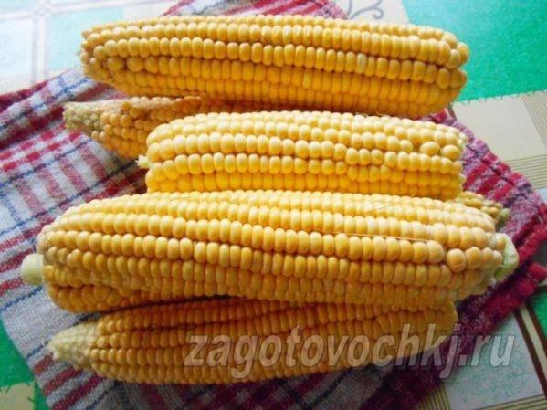 кукуруза для консервации