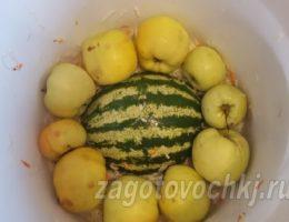 квашеная капуста с яблоками и арбузом на зиму